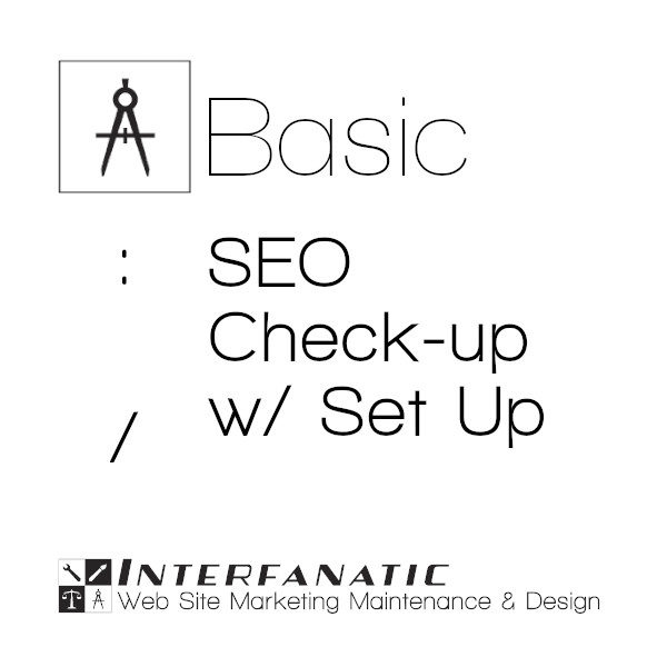 Interfanatic Basic SEO Check-up with Set Up