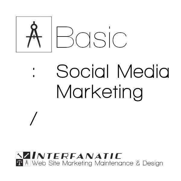 Interfanatic Basic Social Media Marketing